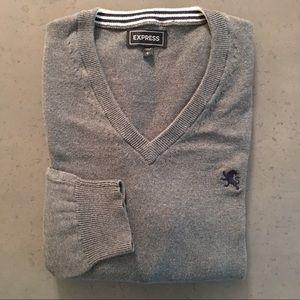 Express men's V-neck sweater